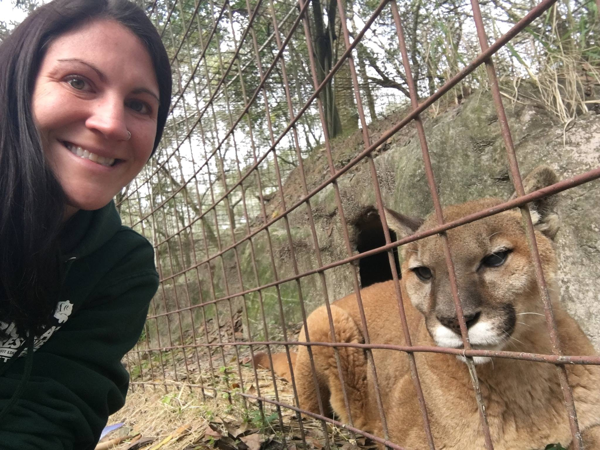 Big Cat Rescue's Videos Are Made By A Caring Woman Living